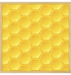 Frame from the hive vector image