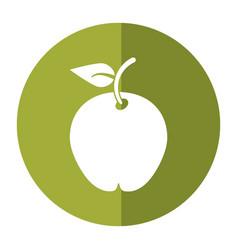 Pear fruit health diet shadow vector