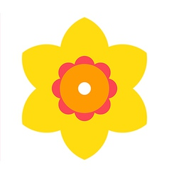 Narcissus - flower icon vector image