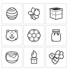 Apiary icons vector