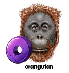 A letter o for orangutan vector