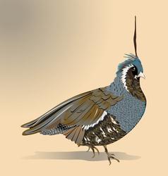 Blue quail vector