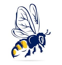 honey bee flying vector image vector image