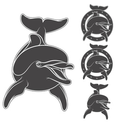 Set of emblem with the logo of a dolphin vector