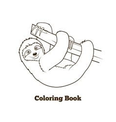 Sloth cartoon coloring book vector