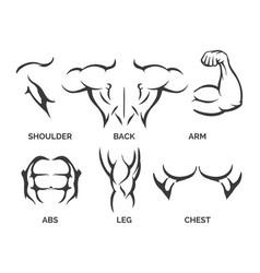Bodybuilder body parts icons vector