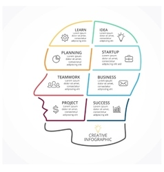 Brain linear infographic human head vector
