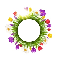 Circle frame with grass flowers and sunlight vector image
