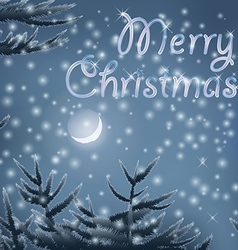 Merry Christmas post card with trees moon night vector image