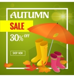 Autumn sale banner Autumn sale flayer Design for vector image