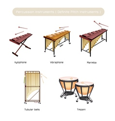 Set of musical percussion instruments vector