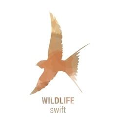 Wildlife banner - bird swift vector