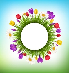 Circle frame with grass and flowers floral nature vector