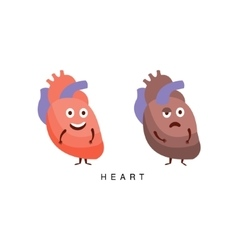 Healthy vs unhealthy heart infographic vector