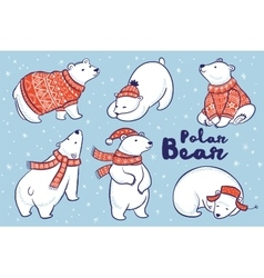 Polar bears collection in red sweater scarf and vector