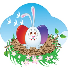Nest Easter bunny vector image