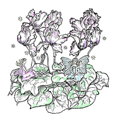 fairies flower cyclamen color vector image vector image