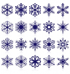 Snowflake shapes vector