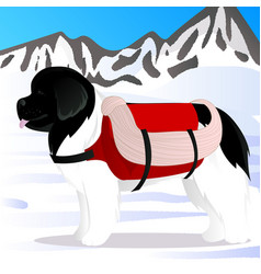 Newfoundland dog lifesaver in mountains vector