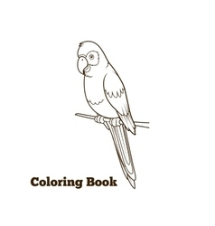 Parrot cartoon coloring book vector image