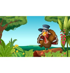 A turkey in the forest vector
