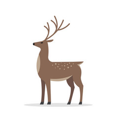 deer male flat isolated on white background vector image