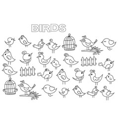 hand drawn birds set coloring book page template vector image vector image