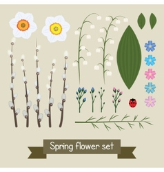 Floral decor set flowers and leaves vector