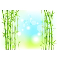 Bamboo nature backdrop vector