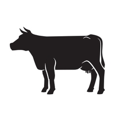 black cow icon vector image vector image