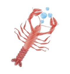 hand drawing lobster sealife top view bubbles vector image