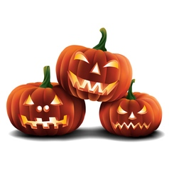 Pumpkins isolated vector