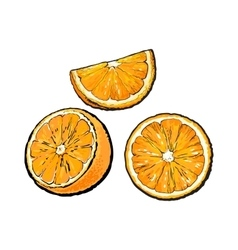 Set of hand drawn orange half slice and segment vector
