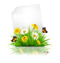 Sheet of paper with grass and spring flowers vector