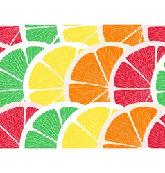 Citrus assorted seamless background vector image vector image
