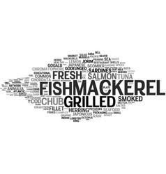 mackerel word cloud concept vector image vector image