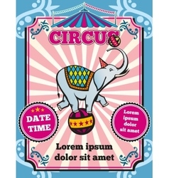 Circus carnival color vintage template vector