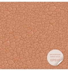 Seamless background leather texture vector