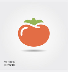 tomato flat icon with shadow vector image