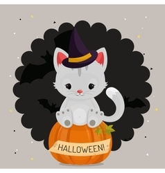 Halloween card or background with white cat vector