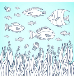 Adult coloring book page kids coloring page with vector