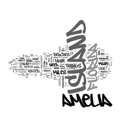 Amelia island condo rentals text word cloud vector