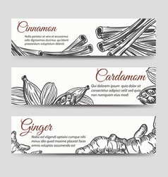 Cookery banners template with spices vector