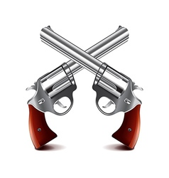 Crossed guns isolated on white vector image vector image