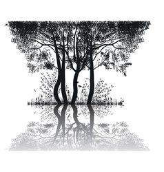 Trees by the lake vector image vector image