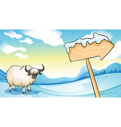 A bison near the wooden arrowboard vector image vector image