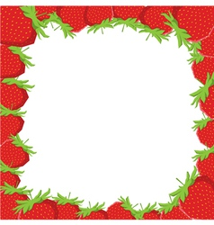 frame strawberry vector image vector image