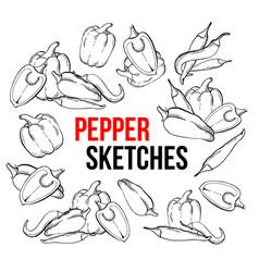peppers vegetarian food vegetable handdrawn vector image