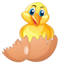 Cute chick in cracked egg vector