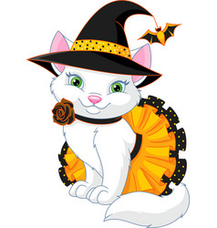 cat witch vector image
